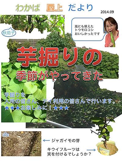 芋掘りの季節